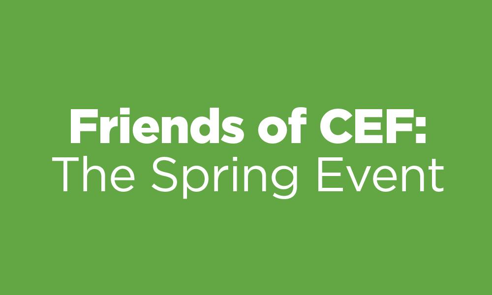 Events_SpringEvent